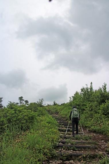 10 登山道.jpg