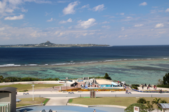 10 美ら海水族館.jpg