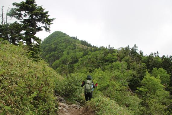 11 登山道.jpg