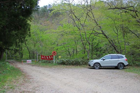 1 花山近辺の林道.jpg