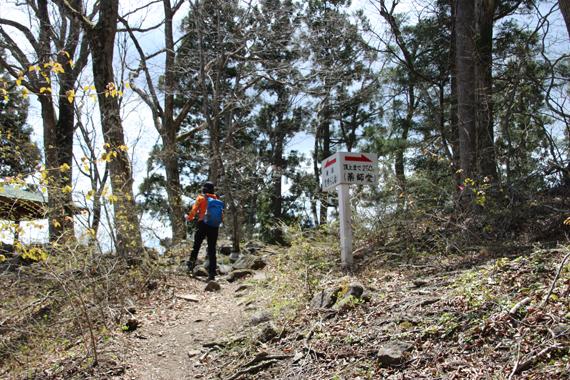 13 登山道.jpg
