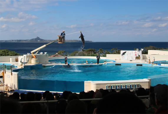 13 美ら海水族館.jpg