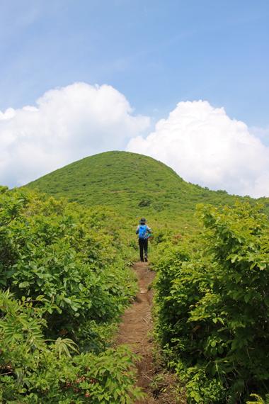 14 登山道.jpg
