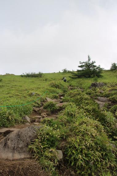 21 登山道.jpg
