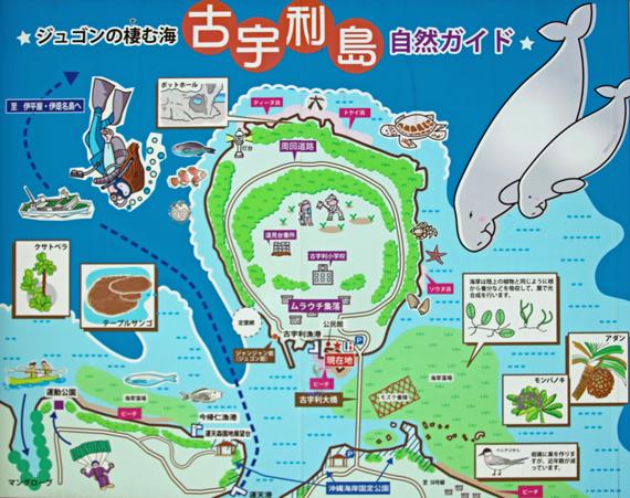 2 古宇利島案内図.jpg