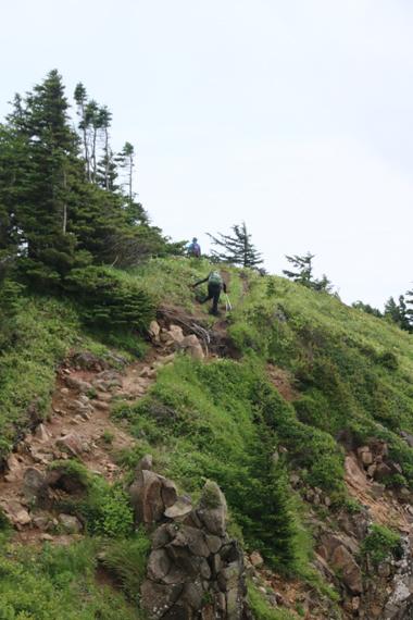 2 登山道.jpg