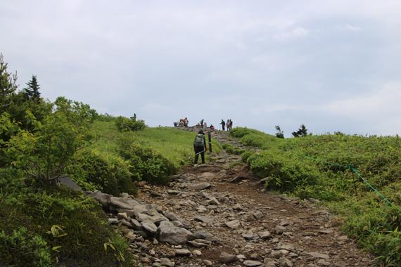 24 登山道.jpg