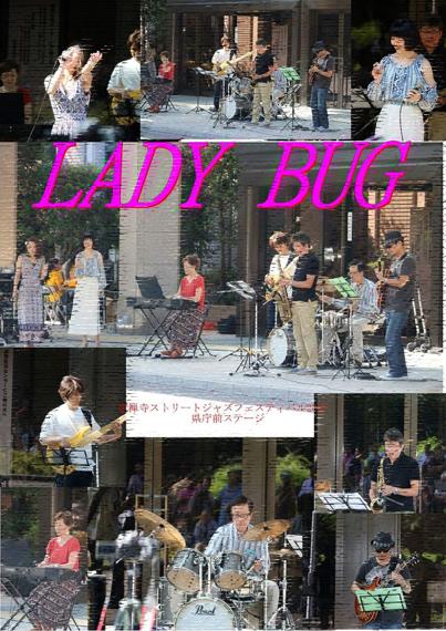 3-1 Lady Bug ポスター.jpg
