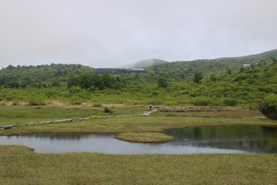 3 イワカガミ湿原.jpg