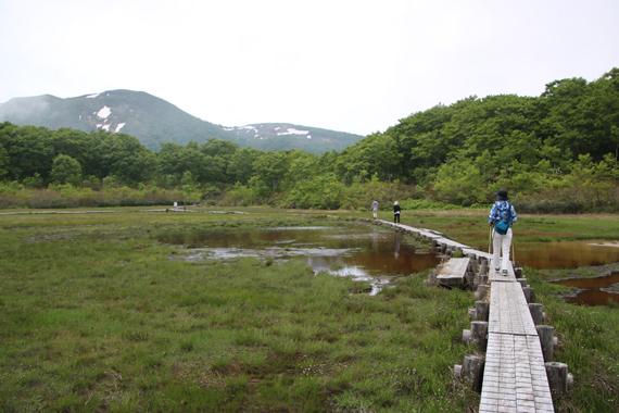 4 イワカガミ湿原.jpg
