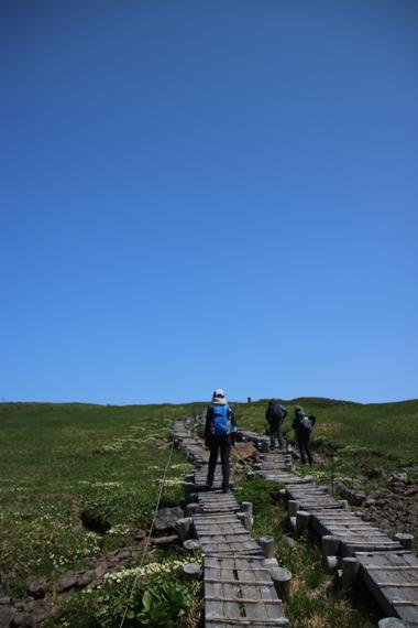 5 登山道.jpg