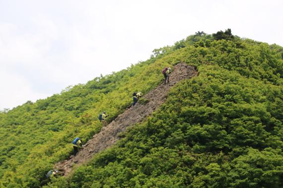 7 登山道.jpg