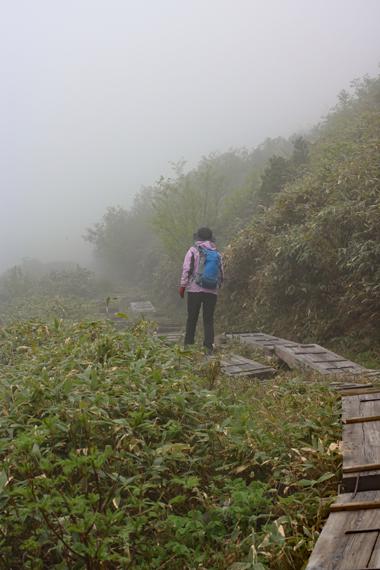 9 登山道.jpg