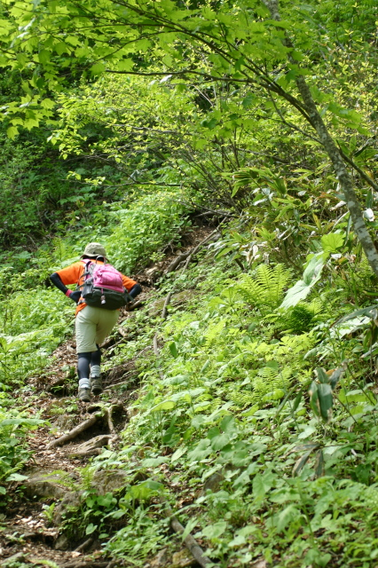 登山道、急斜面.JPG
