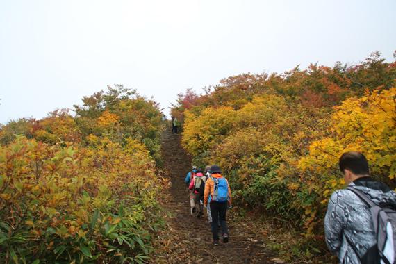 3登山道.jpg