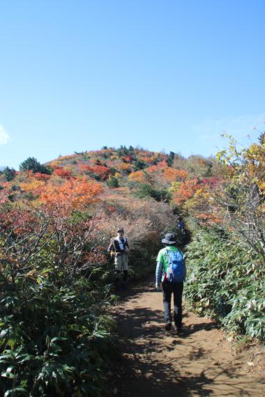 5登山道.jpg