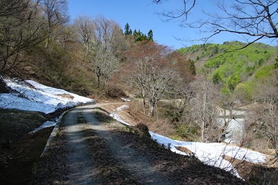 13 残雪の林道.jpg