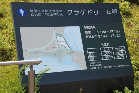3 加茂水族館.jpg