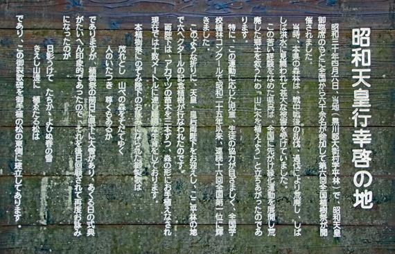 9 昭和天皇お手植えの松.jpg