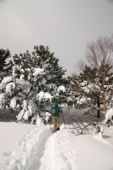 登山コース6.JPG
