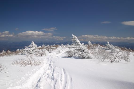 雪景色12.JPG